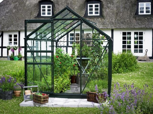 Gewächshaus Juliana Popular 106 6,2m² Alu grün 3mm Blankglas