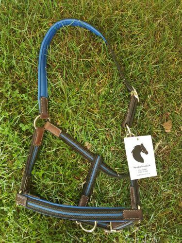 Light-weight  safer Headcollar FULL  Royal Blue Leather /& webbing. Blk
