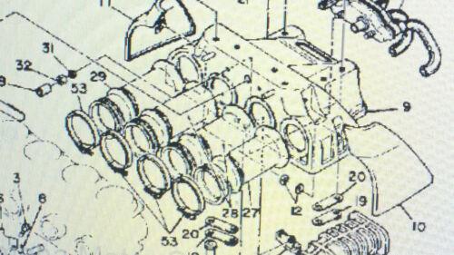 10//91-02//94 HECKKLAPPE LIMOUSINE 44,4C Gasdämpfer für Audi V8