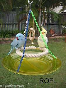 Bird-Toys-Assorted-Parts-Parrot-034-LARGE-Ring-of-Fun-034