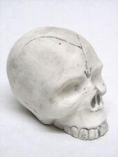 Toten Schädel Briefbeschwerer Dekoration Skull Deko Totenkopf NEU