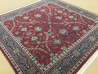5'.0 X 5'.0 Red Navy Blue Semnan Persian Oriental Square Rug Hand Knotted Wool