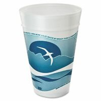 Dart Horizon 32 Oz Foam Cups - Dcc32tj32h on sale