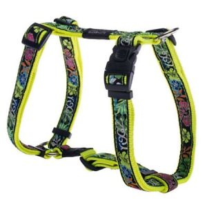 Rogz-Dayglo-Floral-H-Harness-Beach-Bum-Large