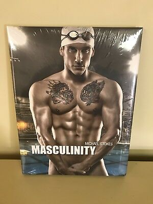 Michael Stokes Masculinity Hardcover New