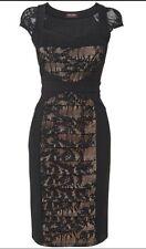 BNWT Phase Eight /8 Aurora Lace Dress , Black / Nude Size 10 ---£140!!!