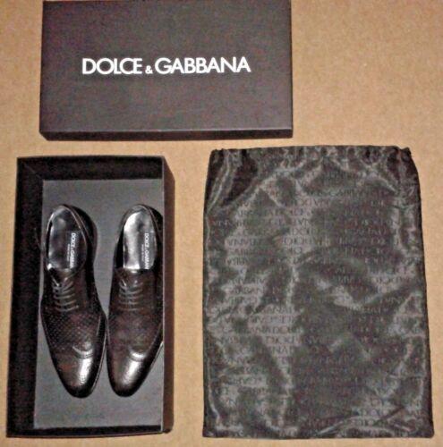 469 £ con 5 la polvere Gabbana Morris per Scarpe sacchetto Rrp Dolce Derby Uk 99 stringate OxpnSAq6