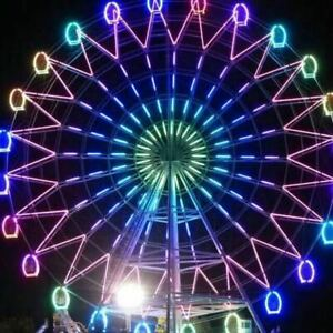 145-039-Ferris-wheel-Theme-Park-Thrill-Ride-Commercial-44-Meters-Tall-We-Finance