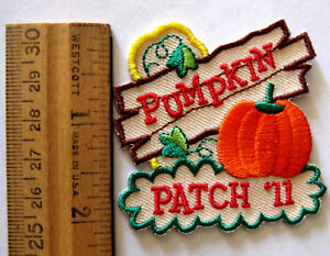 Girl Boy Scout Guide Pumpkin 2011 Fun Patch Halloween Holiday Trip