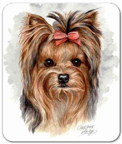 Yorkshire Terrier Mousepad