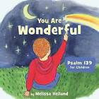 You Are Wonderful by Melissa Heiland (Board book, 2016)