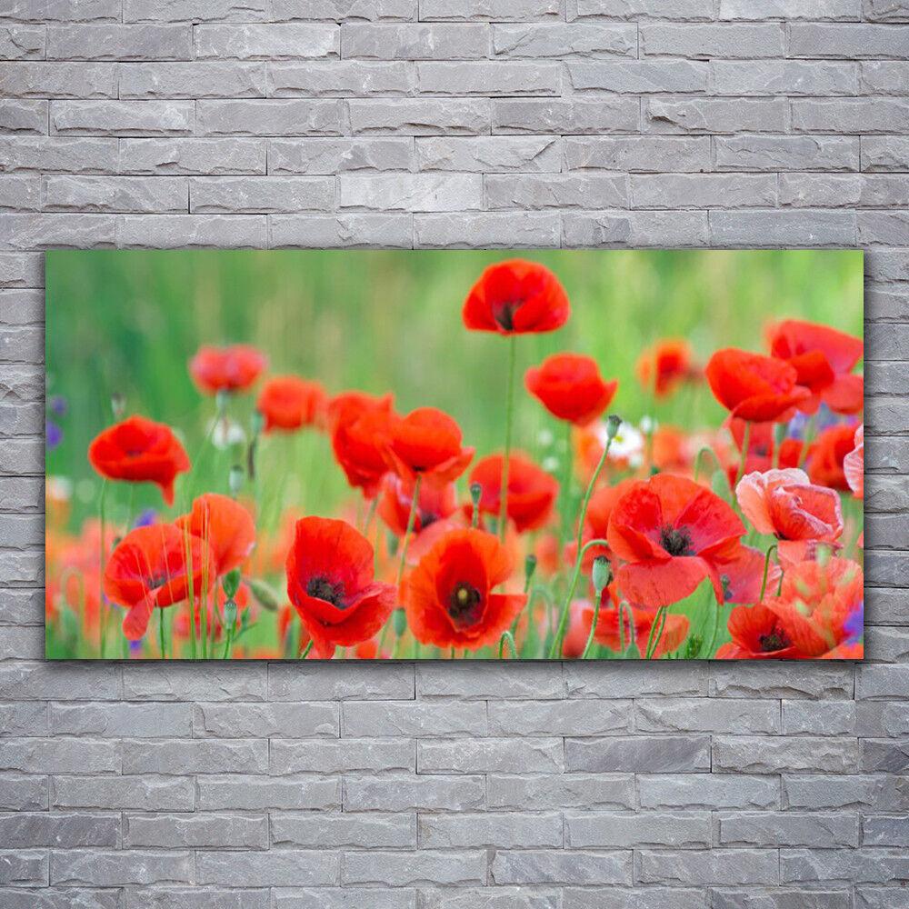 Tableau 120x60 sur Plexiglas® Image Impression 120x60 Tableau Floral Coquelicots 2960f0