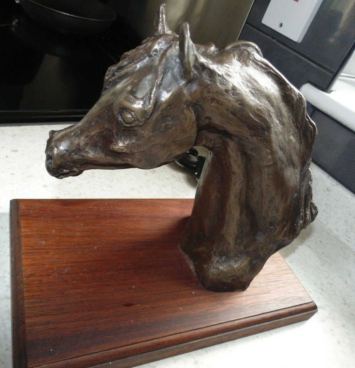 Beautifully sculpted Bronze head of an Arab horse signed by E.Campbell