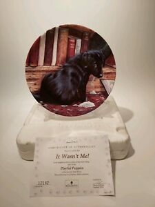 Danbury-Mint-Wedgwood-Playful-Puppies-034-It-Wasn-039-t-Me-034-Collectors-Plate