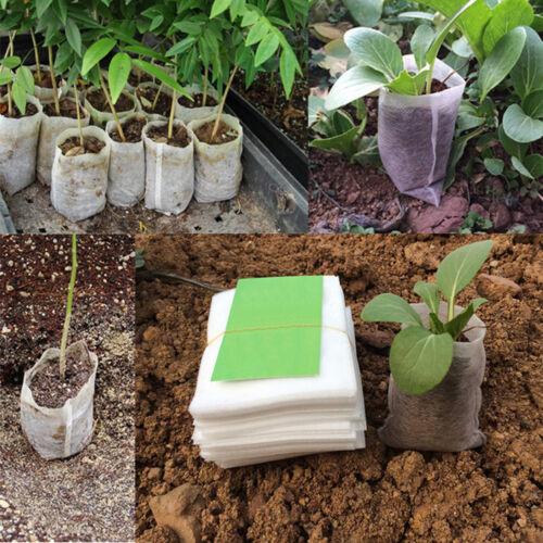 100pcs Seedling-raising Bag Nursery Pot Flowers Pouch Seed Seedlings Lift Bags
