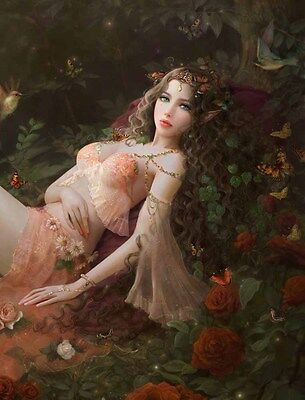 Home Wall Artwork Decor Fairies Flowers Oil Painting Picture Printed On Canvas