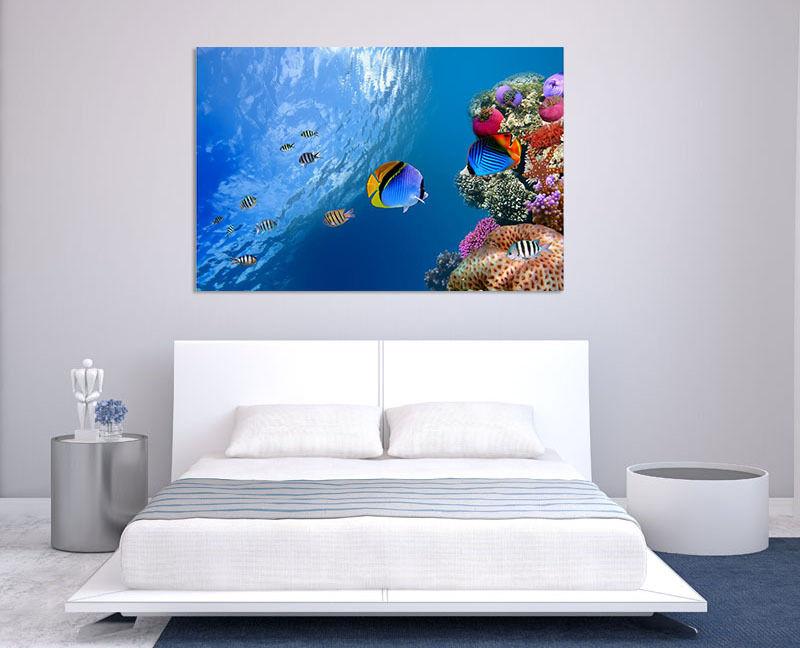 3D Blaue Fische 33  Fototapeten Wandbild  BildTapete Familie AJSTORE DE