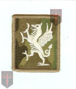 infantry british army OFFICIAL Multicam MTP Royal Welsh TRF