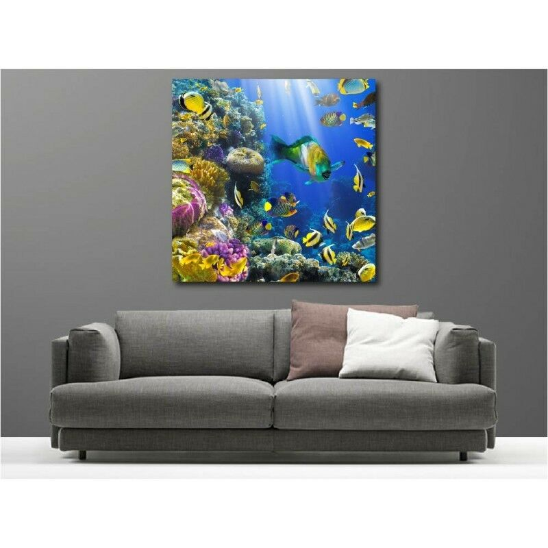 Wandbild Leinwand Deko Fisch Tropischer 81562777