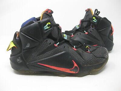 Nike Lebron James XII 12 Data Black