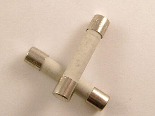2 X 20a//32mm Céramique Fusible Micro-Onde 20 Amps 32mm 20 Ampères T20a Pack de
