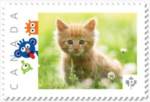 KITTEN IN GRASS  RED CAT Personalized Postage stamp MNH Canada 2018 p18-06sn12