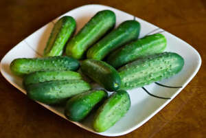 Cucumber Homemade Pickles Great Heirloom Vegetable By Seed Kingdom 100 Seeds