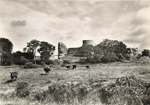 Vintage-Real-Photo-Sussex-Postcard-Pevensey-Castle-from-the-South-IO9