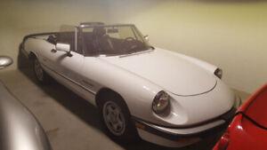 1990 Alfa Romeo Veloce Mint Condition