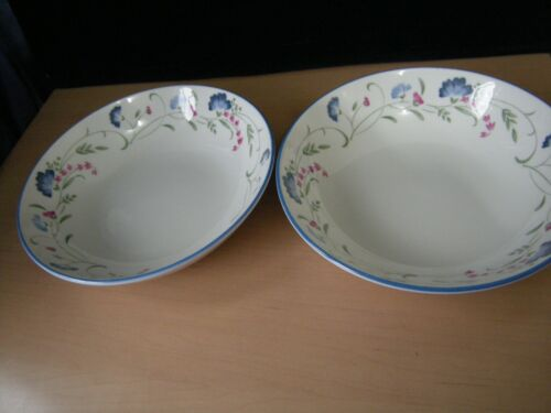 """TWO X ROYAL DOULTON EXPRESSIONS /""""WINDERMERE/"""" CEREAL BOWLS."""