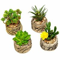 Set Of 4 Succulent Plants Potted Mini Floral Coffee Table Decorations Window