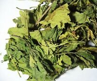 Dried Mulberry Leaf 桑叶 For Herbal Tea 3oz Us Seller Free Shipping
