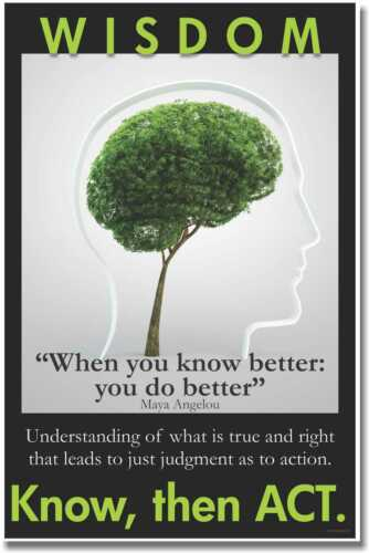 Maya Angelou Quote Know Then Act Wisdom NEW Motivational Classroom POSTER