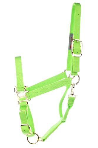 DuMor 2 Ply Lime Green Adjustable Nylon Halter Horse Size Medium