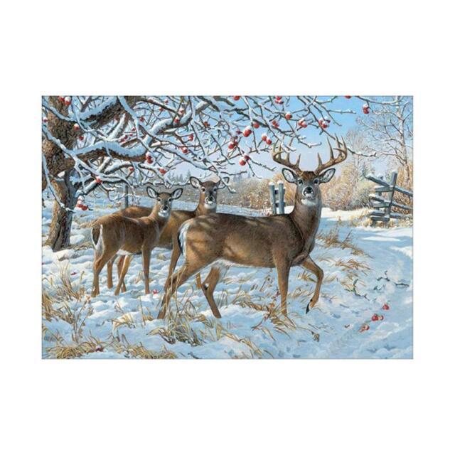 Deer DIY 5D Diamond Painting Embroidery Cross Craft Stitch Art Kit Home Decor