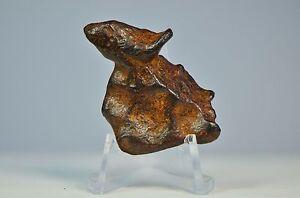 Iron Meteorite - AGOUDAL 26.63g collectors specimen | IIAB Iron Meteorite TM