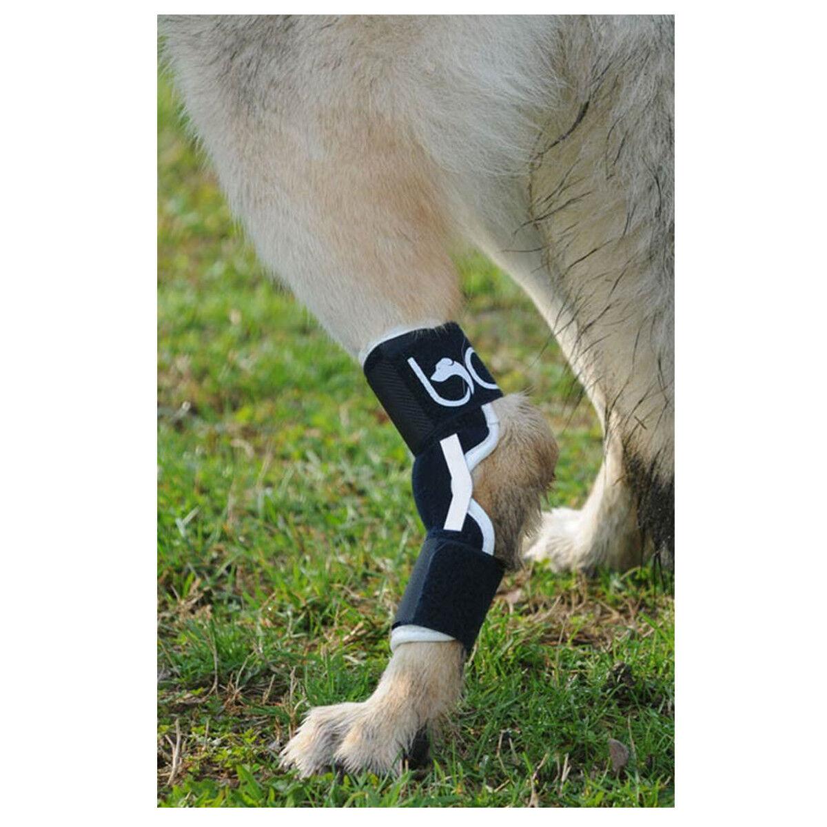 DOG HOCK BRACE – BT HOCK BALTO  Joint Arthritis, Tarsal, Lameness.