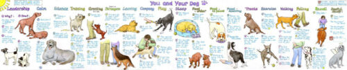 You and Your Dog Chart direct from Liz Cook Charts