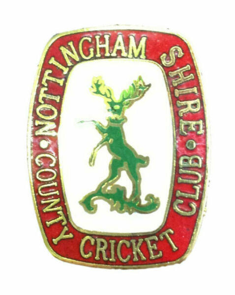 CRICKETER Metal Pin Badge P004 Cricket Sport badges
