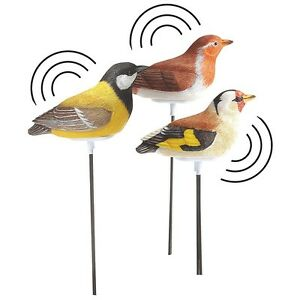 feuchtigkeitsmesser f r zimmerpflanzen vogel sensor wh 02. Black Bedroom Furniture Sets. Home Design Ideas