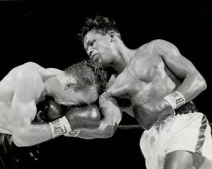 1958-Boxing-SUGAR-RAY-ROBINSON-vs-Carmen-Basilio-Glossy-8x10-Photo-Poster