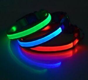 Illuma-Collar-LED-Lighted-Dog-Collar-Martingale-Collar-and-Dog-Leash-Recharge