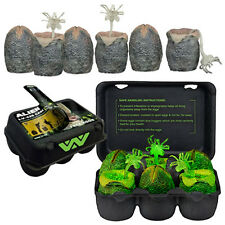 Authentic NECA ALIEN Xenomorph Glow In The Dark 6 Piece Egg Collectible Set NEW
