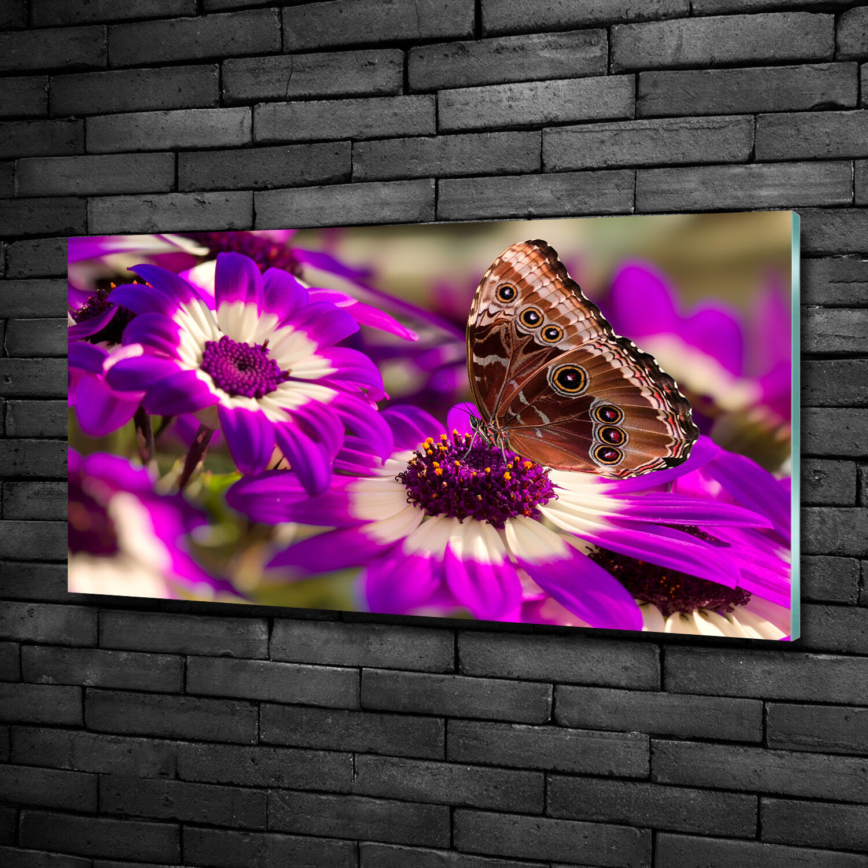 Vetro-Immagine Parete immagini Stampa su vetro 100x50 FIORI & PIANTE FIORE FARFALLA