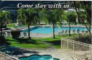 Palm-Springs-CA-034-The-Palm-Court-Inn-Pool-034-4x6-Advertising-Postcard-California