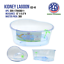 High-Plastic-Turtle-Lagoon-Kidney-Reptile-House-Terrarium-Habitat-w-Plant thumbnail 4
