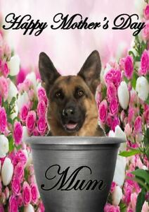 German shepherd pot a5 mothers day greeting card mother mom codepp image is loading german shepherd pot a5 mother 039 s day m4hsunfo