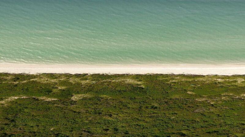 Terreno en venta en Privada Playa Sisal Pueblo Mágico