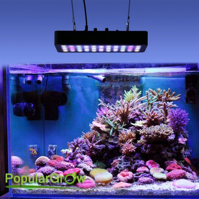 populargrow dimmable 165w led aquarium light full spectrum reef