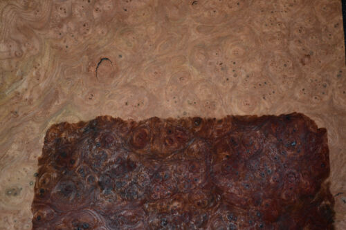 Elm Burl Raw Wood Veneer Sheets 11 x 20 inches 1//42nd              8708-48